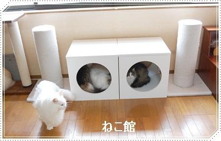 blog10_20170704095630b1c.jpg