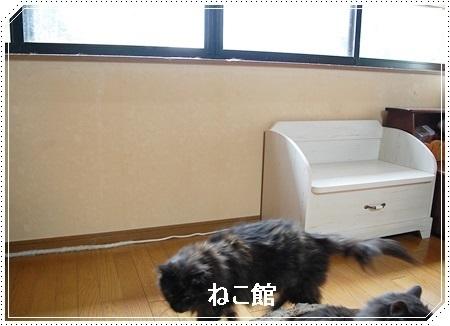 blog2_2017070409560642c.jpg