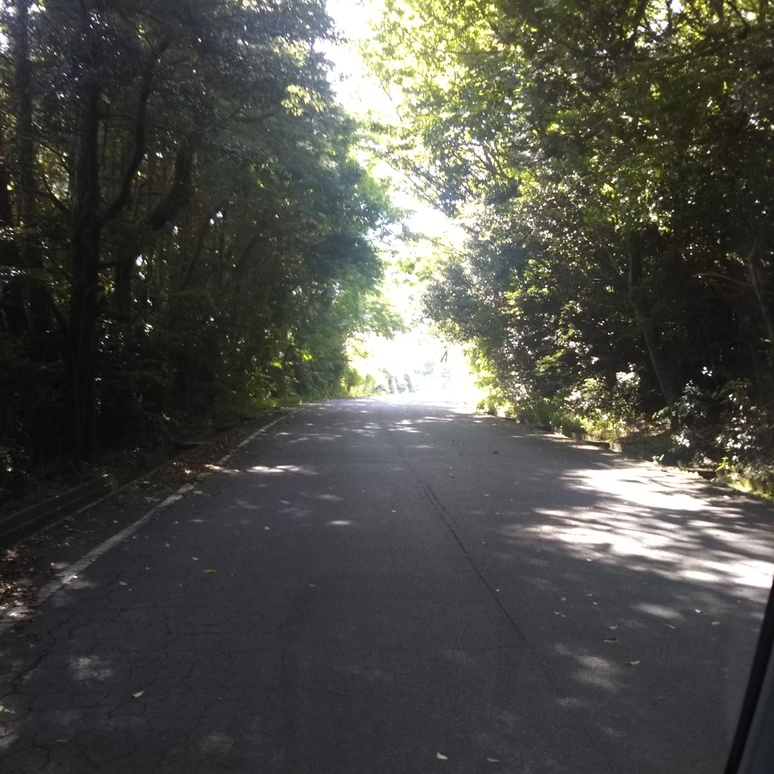 road20170514.jpg
