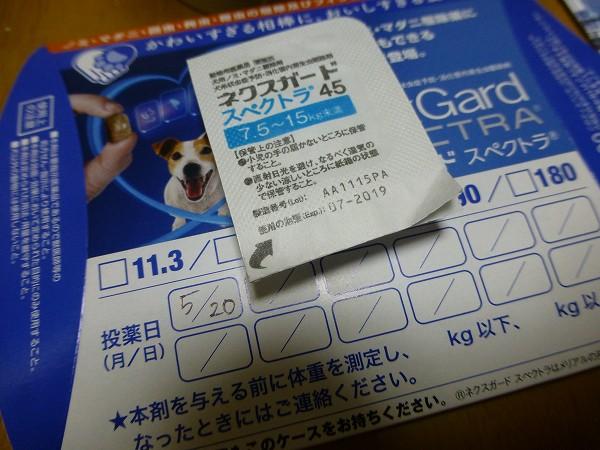 P1190118-s.jpg