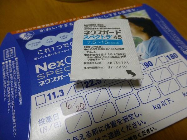 P1190218-s.jpg