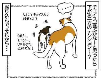 03072017_dog3mini.jpg