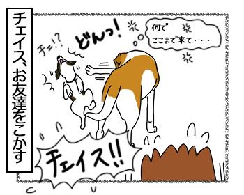 03072017_dog4mini.jpg