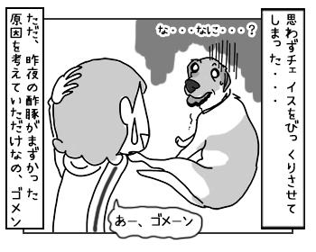 07062017_dog4mini.jpg