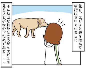 14062017_dog1mini.jpg