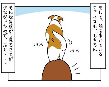14062017_dog3mini.jpg