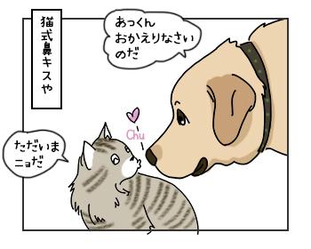 15062017_dog1mini.jpg