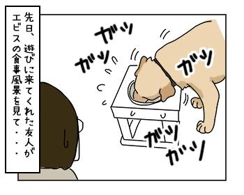 16062017_dog1mini.jpg