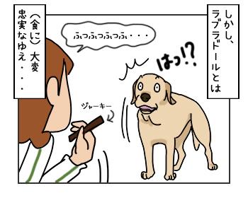 17052017_dog2mini.jpg