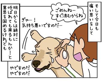 17052017_dog4mini.jpg