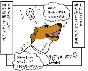 17052017_dog4mini_20170517142522d1a.jpg