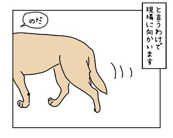 19052017_dog2mini.jpg