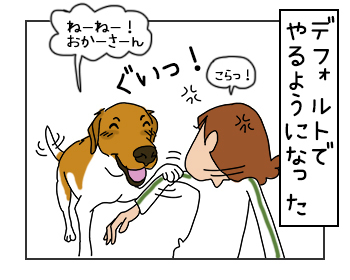 20062017_dog4mini.jpg