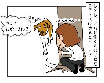 23052017_dog3mini.jpg