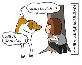 23052017_dog4mini.jpg