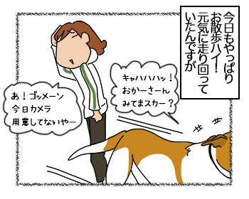 26062017_dog2mini.jpg