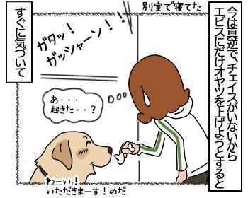 27062017_dog2mini.jpg