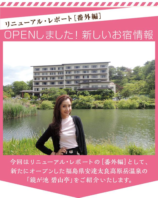 new5_hekizantei_title.png