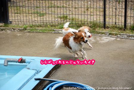 170531_yuasa4.jpg