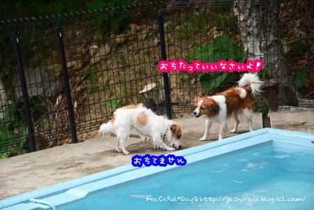170531_yuasa5.jpg