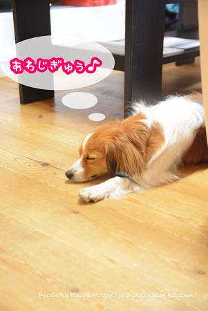 170606_yui18.jpg