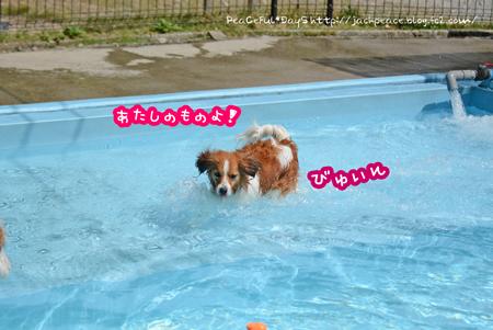 170612_yuasa11.jpg