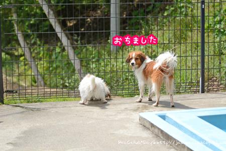 170612_yuasa8.jpg