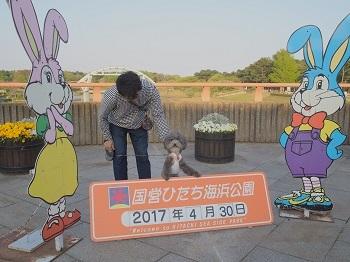 ひたち海浜公園20170430-20