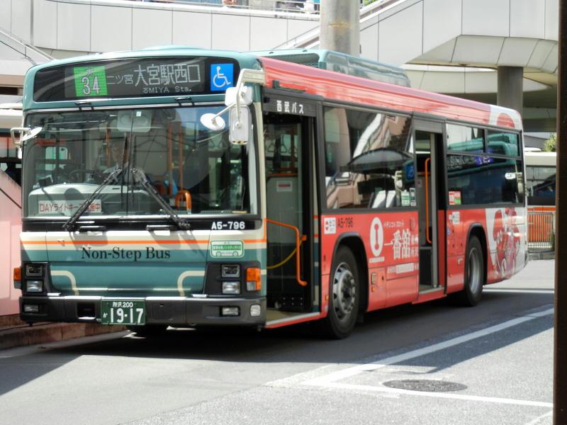 DSCN9287.jpg