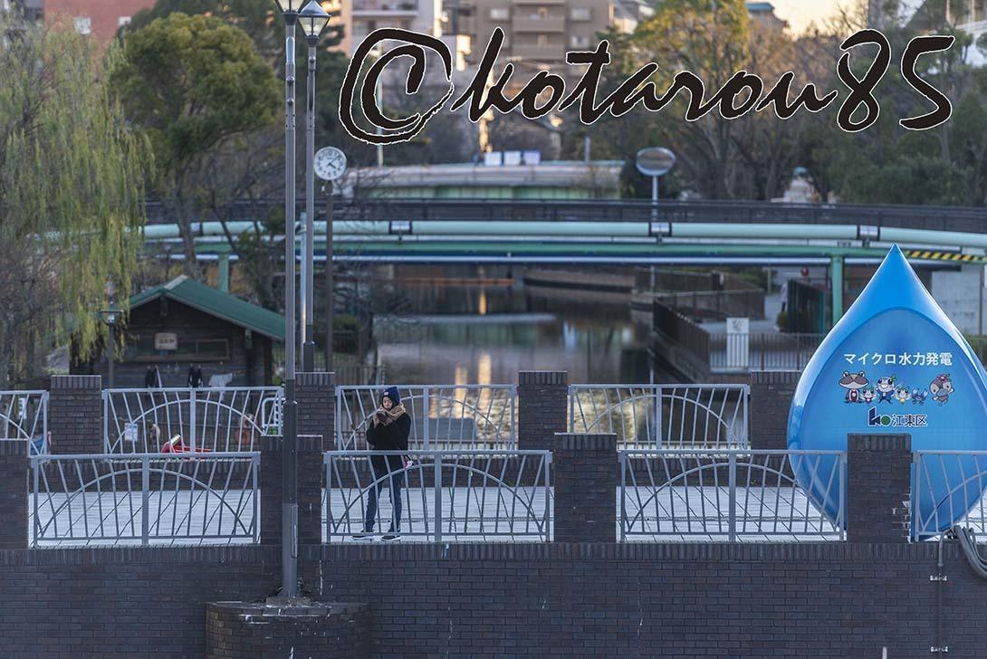 新春の運河 20190105