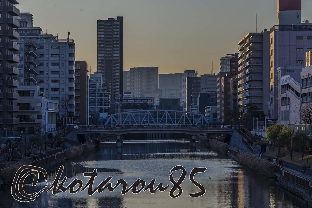 新春の運河4 20190105