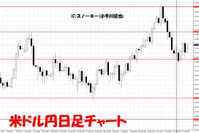 20181020さきよみLIONチャート検証米ドル円日足チャート
