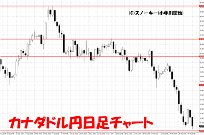 20181229カナダドル円日足チャート