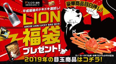 2019年ヒロセ通商LION福袋