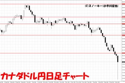 20190103カナダドル円日足チャート