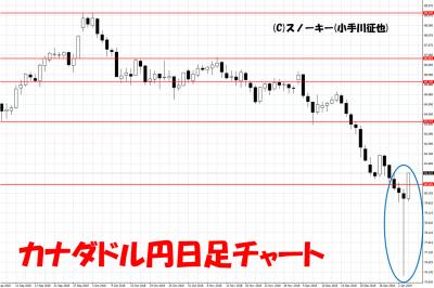 20190105トラッキングトレード検証カナダドル円日足チャート