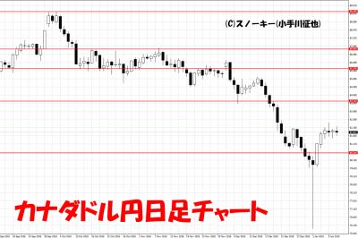 20190112カナダドル円日足チャート