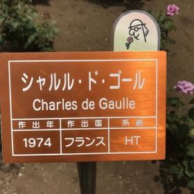 20170608_charles_de_gaulle_.jpg