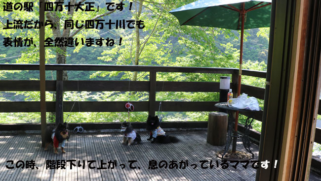 0A1A5298-987654567-98765.jpg
