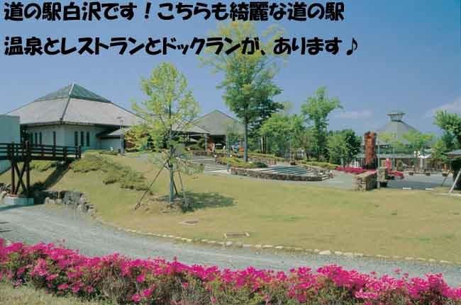 shirasawa-9876567-9876.jpg
