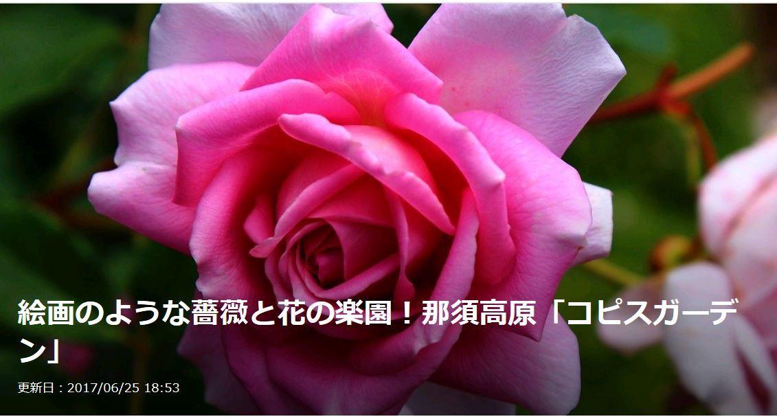 20170626074639502.jpg