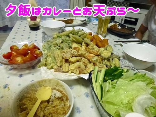 カレーとお天ぷら