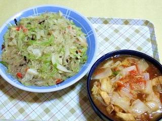170613_4721 キャベツと春雨の旨塩炒め・白菜と薄揚げの旨煮VGA