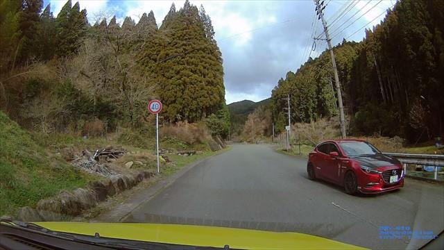 道路でくつろぐ犬-5
