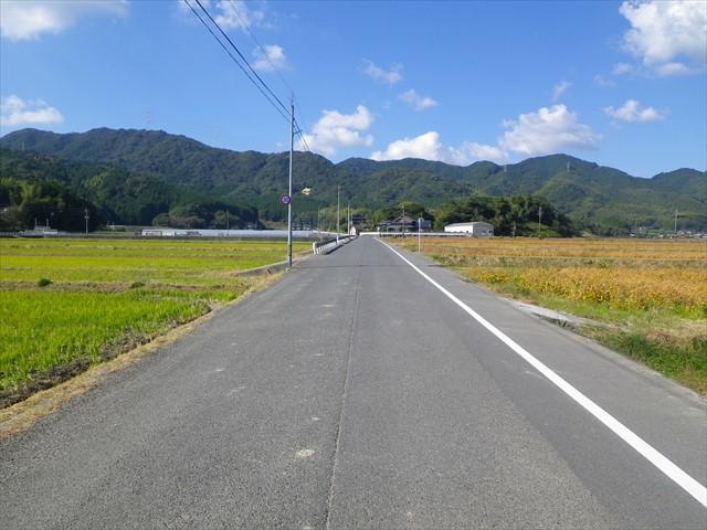 勝山の農道