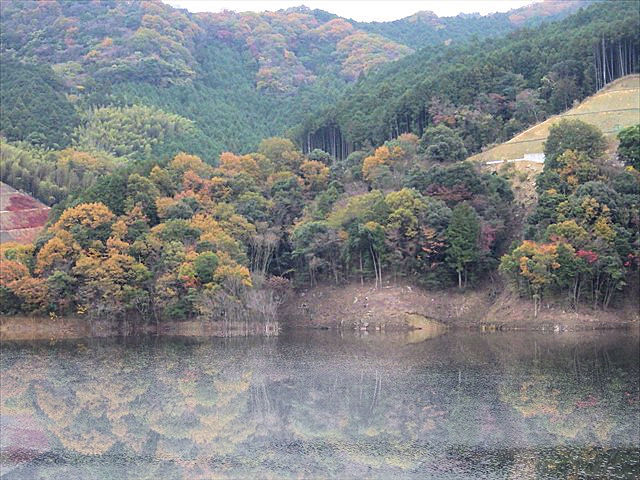 伊良原ダムの紅葉-3