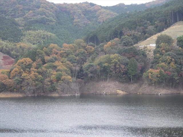 伊良原ダムの紅葉-1