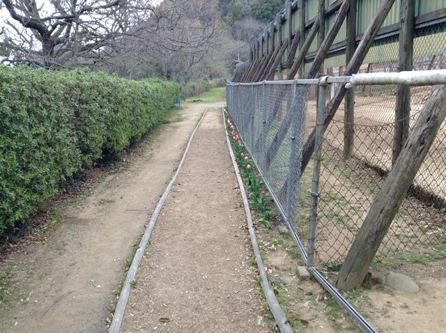 takagoyama06.jpg