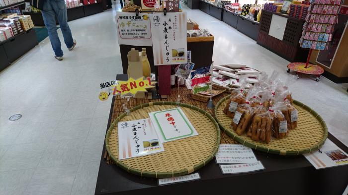 道の駅・富士川21