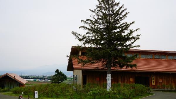【2017年5月北海道旅行】2日目後半